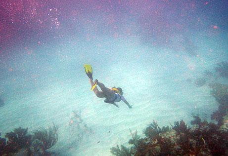 Snorkeling Cancun avanzado