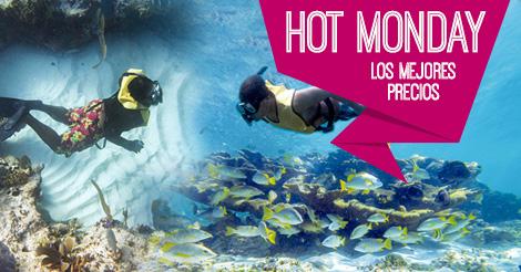 Tour De Snorkel En Cancún En Aguas Abiertas Y Arrecifes Vírgenes
