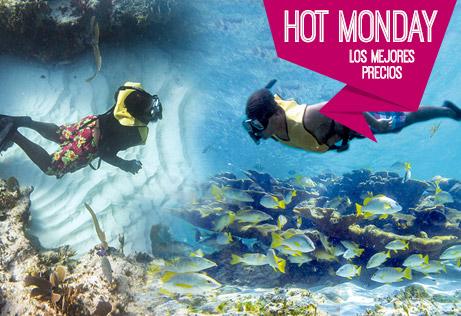 Hot Monday Tour De Snorkel En Cancún En Aguas Abiertas Y Arrecifes Vírgenes