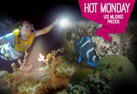 Hot Monday Snorkeling Nocturno En Cancún, México