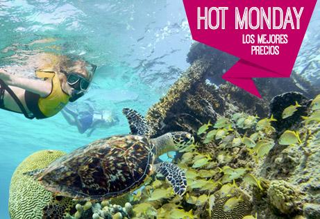 Hot Monday-Tour De Snorkel En Arrecife, Musa, Encuentro Con Tortugas Y Barco Hundido
