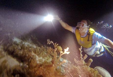 Snorkeling Cancun NIGHT 1