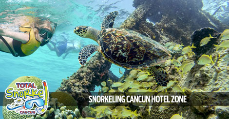 Cancun Underwater Museum Snorkeling Tour