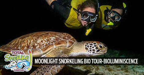 Cancun Moonlight Snorkeling Bio Tour