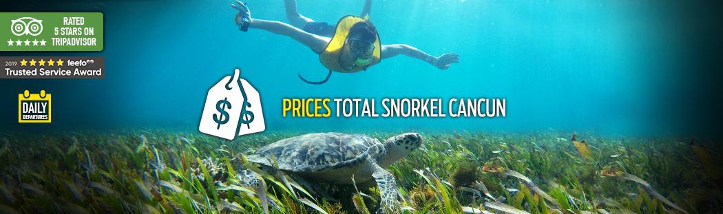 precios Snorkel