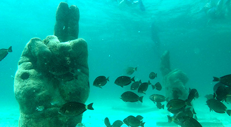Reef, Musa, Turtle Encounter And Shipwreck Cancun Snorkeling Tour