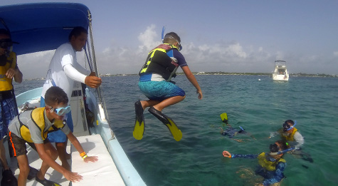 Enjoy 4 completely different habitats